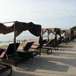Nice deck chairs facing the calm sea