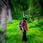 Raksham Walks in the woods, Sangla.