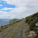 Dursey Island Speed Limit