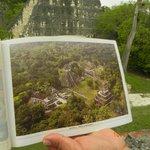 cartina con vista dall'alto del sito di Tikal