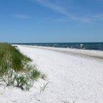 White sand in Denmark
