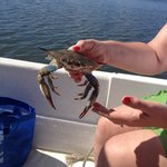 First crab off the line!