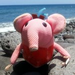 Tiny Clanger (moved around by the housekeeping team)