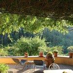 נוף ממרפסת חדר האוכל