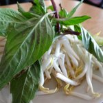 Bean sprouts, lime and herbs