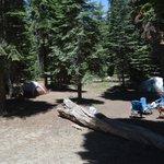 Campsite 105