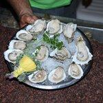 Boss Oyster Foto