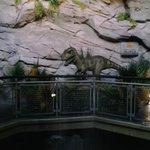 Dinosaurs at the Aquarium 2014