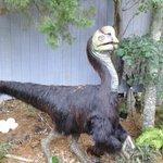 NC Pine Knoll Shores Aquarium Exibit Dinosuarus