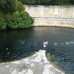 Gran fuente con cisnes.