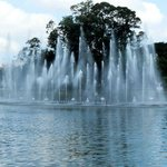 1º lago - onde ocorre as apresentações
