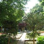 Jardín del asilo donde estuvo recluido Van Gogh