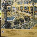 Oleo de Van Gogh del jardín del asilo donde estuvo recluído