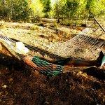 Hängematte hinterm Zelt