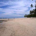 Isla Tortuga - white sand beach