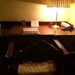 La scrivania della camera