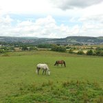 View from car park to Holcombe Hill