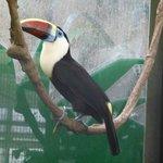 Zoo et serres de Montpellier
