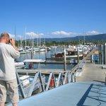 Yachts at Yorkeys Knob boat club