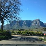 View of Table mountain from Stellenbosch