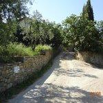 Photo of Ca dei Mignoni