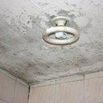 ceiling in bathroom!