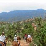 On horseback!