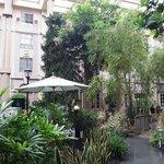 Botanical lobby