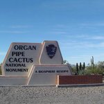 Entering the Organ Pipe Cactus National Monument on SR-85