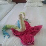 The cleaner made it out of our own towels