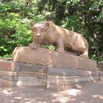 Nittany Lion Shrine - July 6, 2014