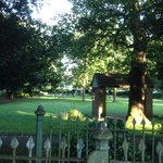Part of Ealing Common greenery