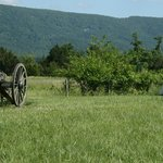 Cannon and tent in the meadow