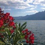 Ascona e Isole di Brissago - giugno 2014