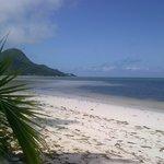 Vue de Grand Anse depuis le jardin de l'hôtel