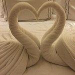 Swans Decorations
