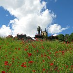 Ironbridge Gorge- Carpet of Red Poppies Leading To WW1 Soldier- Cenotaph- Ph Courtesy of Paul Re