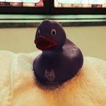 Bathroom ducky
