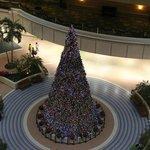 ロビー階にある大きなクリスマスツリー