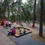Огромнейшая детская площадка в парке Дзинтари