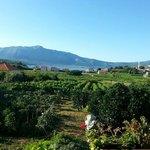 View of Korcula, Croatia on Korcula Explorer Wine Tour