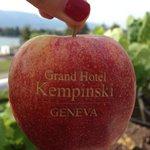 Фирменная печать на яблоках