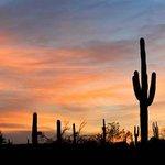 An Arizona Sunset awaits you