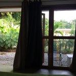 Vista desde la habitación, en frente un pequeño jardín.