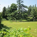 Marle Place Gardens, Brenchley, Nr Tonbridge, Kent (4th July 2014)