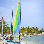 Some of the sail boats at The Riu