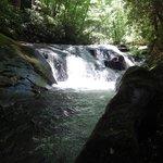 Waterfalls dot the hike to Hemlock