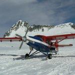 The plane landing on the glacier.