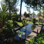 little walkway ver fish pond