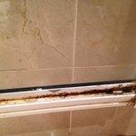 Bottom of shower door